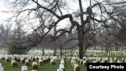 Arlington National Cemetary