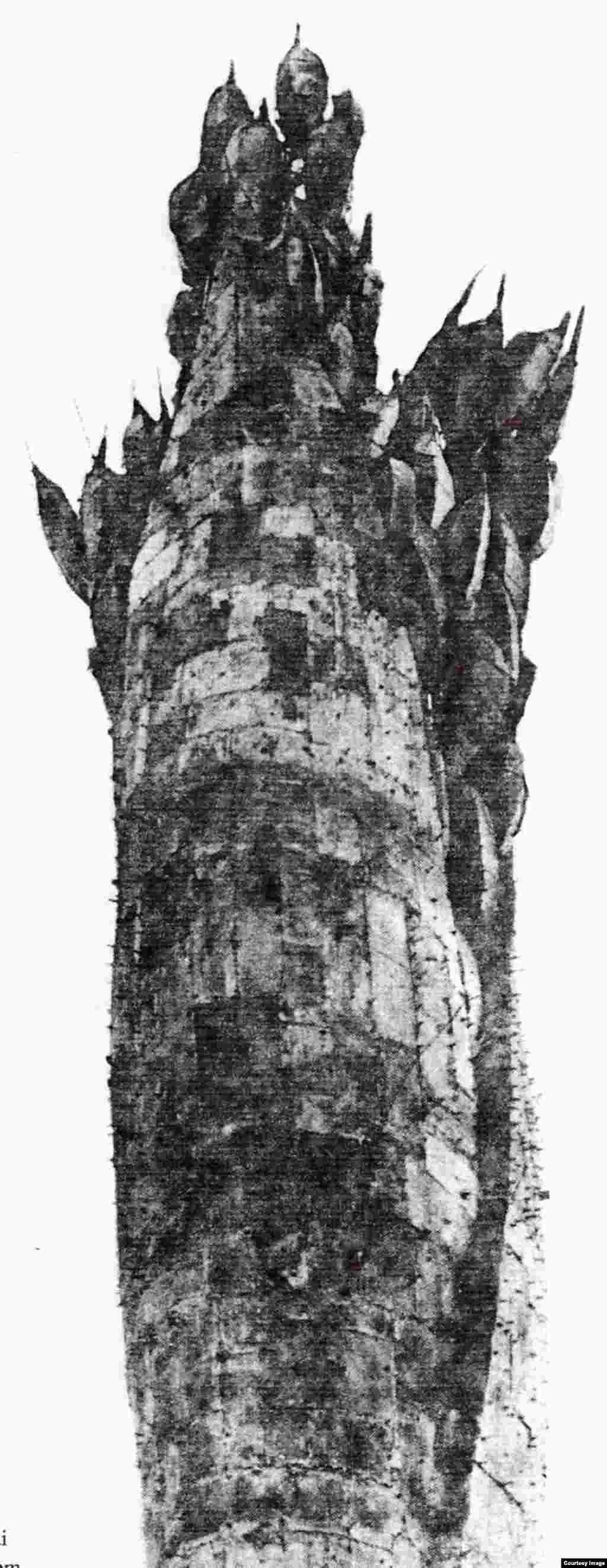 Bông Lúa Con Gái Những mảnh đồng ghép, cao 53 ft tượng ngoài trời Mai Chửng – 1970