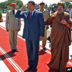 Chegou a ser levantada a hipótese de o presidente da Venezuela, Hugo Chávez, acolher no seu país o líder da Líbia, Muammar Kadhafi. Mas tal não se verificou.