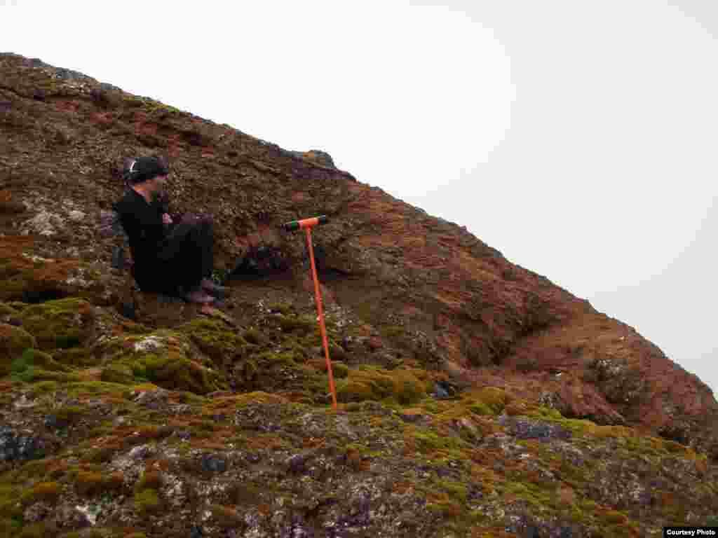 El banco de musgo de la isla Elefante en las islas Shetland del Sur, con más de 500 años de antiguedad es capaz de revelar información importante a los científicos. (Dan Charman/Matt Amesbury)