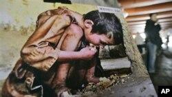 Bắc Triều Tiên đả kích Tổng thống Nam Triều Tiên Park Geun-hye vì đề cập đến nạn đói ở miền Bắc và sự cô lập của nước này.
