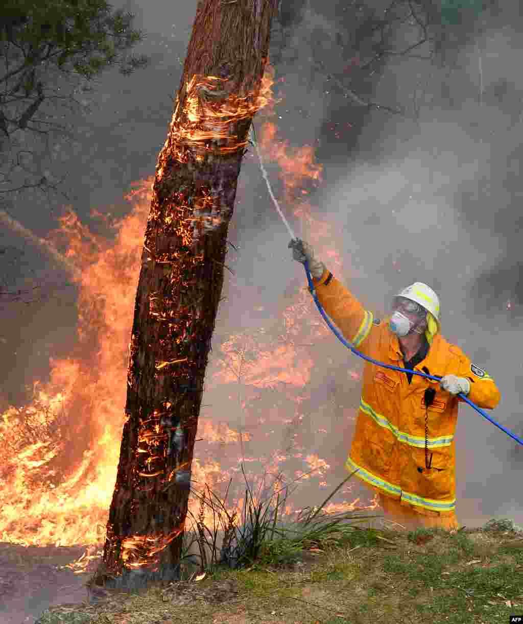 호주 동남부에서 며칠째 대형 산불이 계속되는 가운데, 소방관이 블루마운틴 주택가로 번진 불을 끄고 있다.