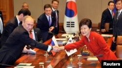 South Korean President Park Geun-hye (R) shakes hands with Russian President Vladimir Putin (L) during their meeting at the presidential Blue House in Seoul, Nov. 13, 2013.