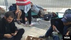 Viyana'daki tren istasyonunda telefonlarını şarj eden mülteciler