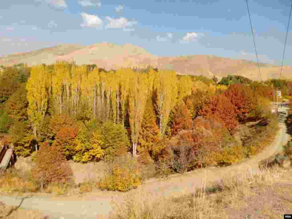 پاییز - کرج روستای جلنگدار عکس: هادی (ارسالی شما)