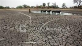 Dy të tretat e botës, mungesë uji