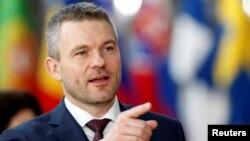 Thủ tướng Slovakia Peter Pellegrini nói sẽ có cuộc điều tra sau khi truyền thông cho biết chính phủ Slovakia cho phép các quan chức Việt Nam dùng chuyên cơ của nước ông để đưa Trịnh Xuân Thanh ra khỏi châu Âu.