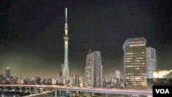 Japan: Pogled na Tokio sa 450 metara visine