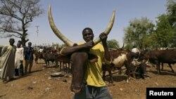 Marché aux bestiaux de Maiduguri au Nigeria, le 9 mars 2016.