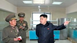 North Korean leader Kim Jong-un visits the Turf Institute of the Bioengineering Branch in Pyongyang, May 6, 2013. (KCNA)