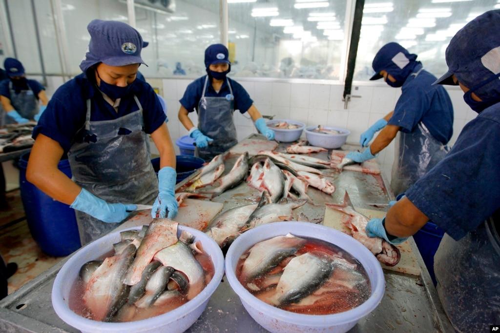 Вьетнам приостановил регистрацию новых поставщиков рыбы в США