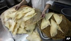Vây cá được chuẩn bị đem nấu tại một nhà hàng ở Hồng Kồng