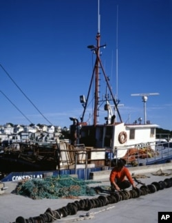 A Gloucester fisherman dries and repairs his net