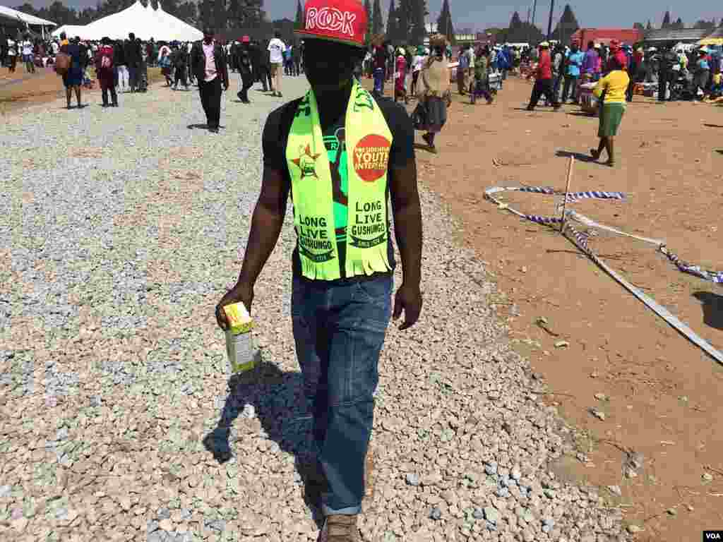 A Zanu PF supporter wearing clothes with party colors.