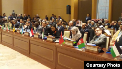 OIC Countries Appreciate Indonesia's Role in Rakhine State Issue