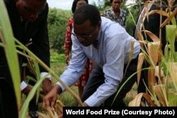 FILE - African Development Bank President Akinwumi Adesina has been awarded the 2017 World Food Prize for his work to improve the lives of millions of small farmers across the Africa.