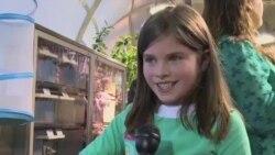 Павильон живых бабочек празднует пятилетие
