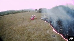Požari u Amazoniji