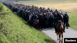 Polisi Slovenia mengatur para migran di dekat kota Dobova, Slovenia hari Selasa (20/10).