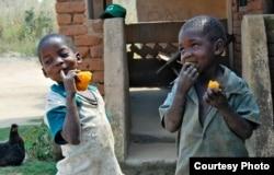 FILE - Children are seen enjoying orange sweet potatoes. (Courtesy - HarvestPlus)