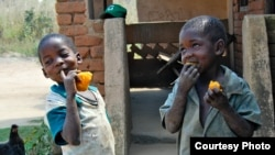 Des enfants mangeant des patates douces enrichies (Photo HarvestPlus)