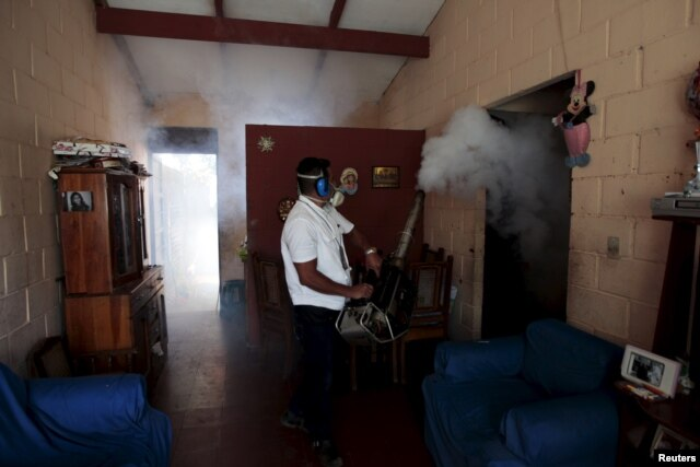 A health worker fumigates the Altos del Cerro neighbourhood as part of preventive measures against the Zika virus and other mosquito-borne diseases in Soyapango, El Salvador, Jan. 21, 2016.