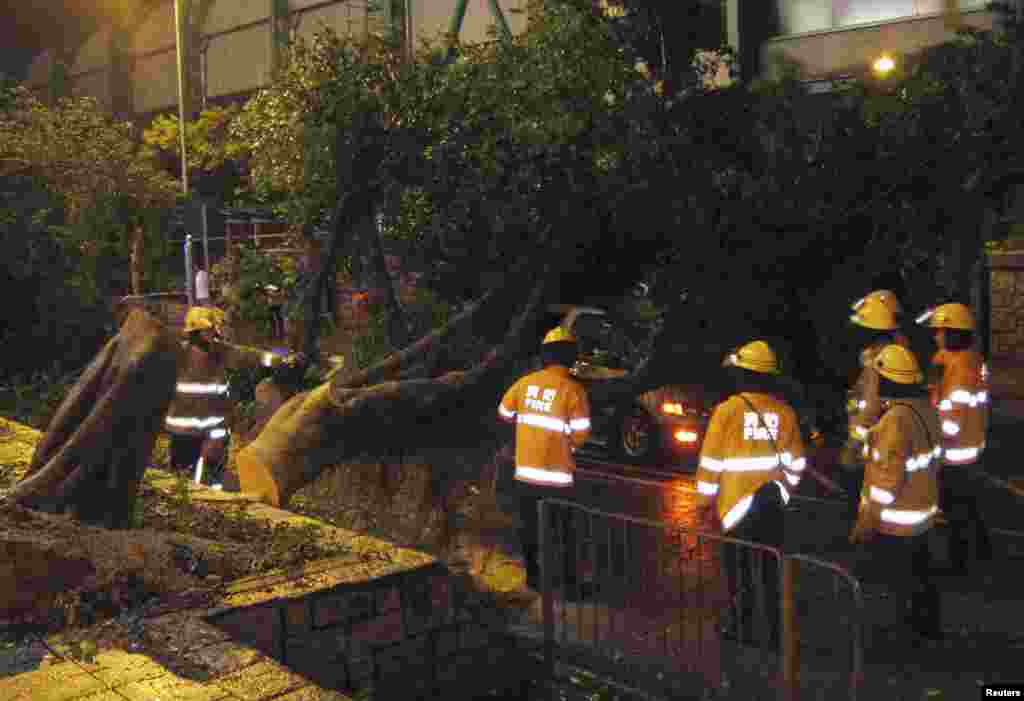 Firemen try to remove a tree that hit a car during a typhoon in Hong Kong's rural Taipo district, July 23, 2012.