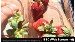 Cảnh sát hai bang của Úc đang điều tra về phát hiện kim khâu trong trái dâu tây.