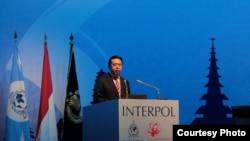 国际刑警组织主席、中国公安部副部长孟宏伟 (国际刑警组织官网图片)