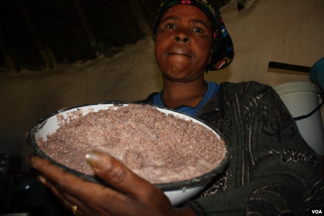 Shebeen owner Nongezile Mdibanto displays sorghum that she's going to make beer from … She blames the community law for falling sales (D. Taylor/VOA)