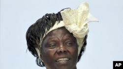 Mshindi wa tunzo ya Amani ya Nobel Wangari Maathai akishiriki kwenye majadiliano katika chuo kikuu cha Nairobi, Machi 8, 2010.