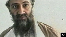 Osama bin Laden (file photo)