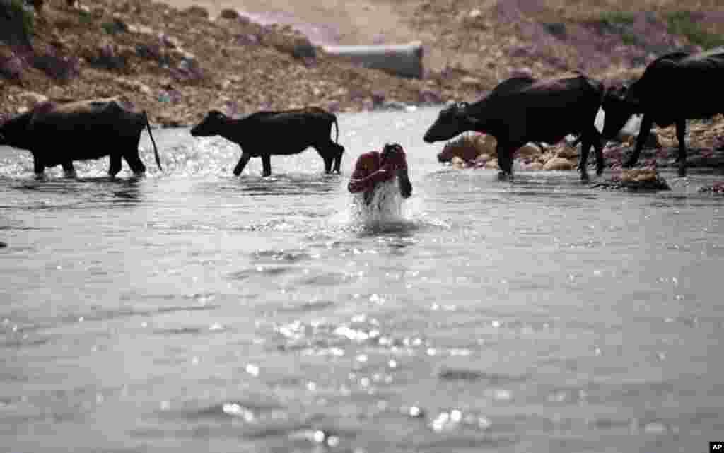 Người Ấn Ðộ tắm sông Tawi tại Jammu, ngày 22/3/2012. (AP)