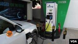 Para pemilih muda AS memromosikan mobil listrik untuk mengatasi perubahan iklim (foto: ilustrasi).