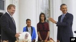 奥巴马总统与他的两个女儿11月23日在白宫赦免火鸡