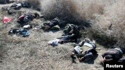 Syria (Feb. 26, 2014)