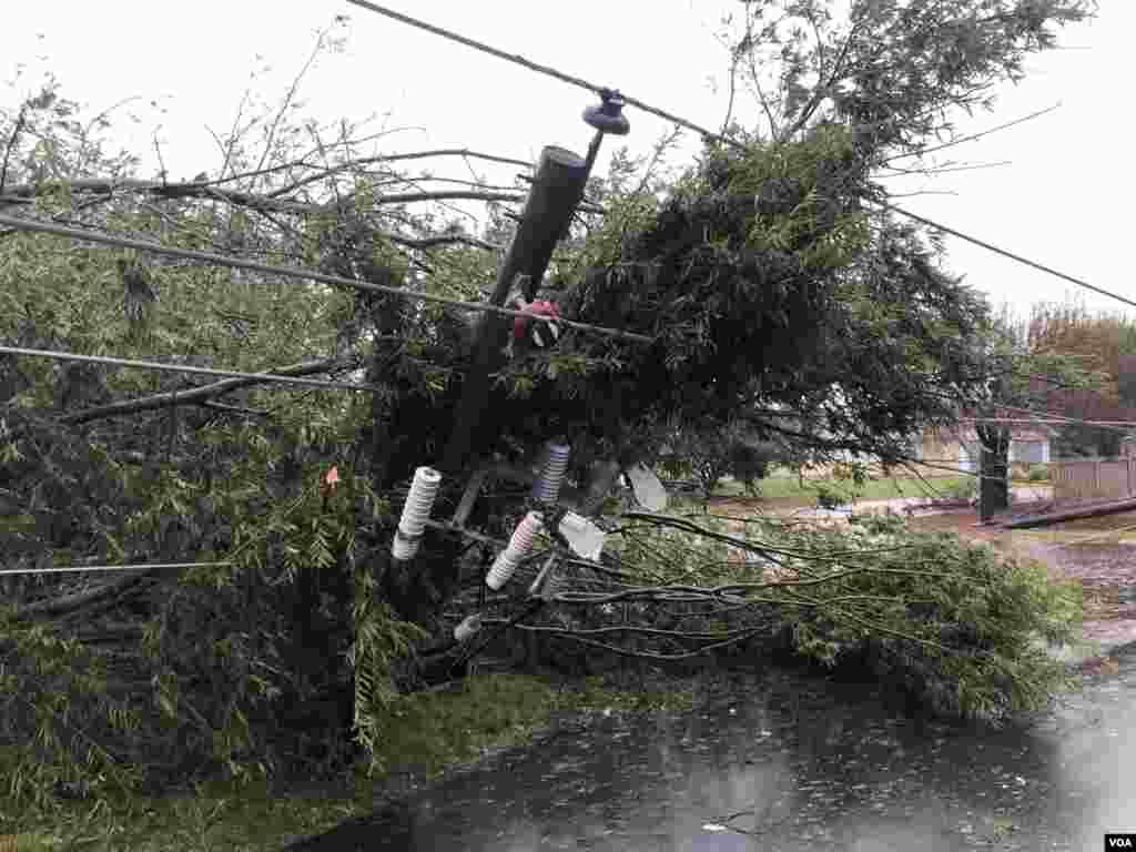 Postes eléctricos derribados por vientos provocados por el huracán Florence en Carolina del Norte. Muchos lugares en esa zona perdieron el servicio eléctrico.