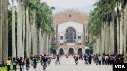 圖為台灣大學校園。(2017年11月23日)