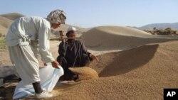 تلاش به تعدیل قانون کار در افغانستان