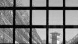 گزارش: نامه سرگشاده هنرمندان در اعتراض به بازداشت همکاران خود