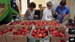 FILE - Women choose Dutch tomatoes at a supermarket in downtown Moscow. The Russian government has banned all imports of meat, fish, milk and milk products and fruit and vegetables from the US, EU, Australia, Canada and Norway.