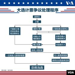 大选计票争议处理程序
