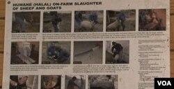 Poster ini menjelaskan mengenai tata cara penyembelihan halal ini terpampang di salah satu dinding peternakan Wagon Wheel, Maryland.