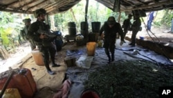 Un equipo de la policía de narcóticos inspecciona un laboratorio antes de destruirlo en Puerto Concordia, en el Meta, departamento colombiano.