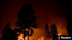 کیلی فورینا کے جنگلات میں سینکڑوں مقامات پر آگ بھڑک رہی ہے اور ہزاروں فائر فائیٹرز آگ پر قابو پانے کی کوششیں کر رہے ہیں۔