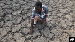 FILE - Last Zimaniwa feels the broken ground at a spot which is usually a reliable water source that has dried up due to lack of rains in the village of Chivi , Zimbabwe, Jan. 29, 2016.