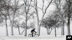 Bão tuyết tại bờ biển ở Chicago. (AP Photo/Charles Rex Arbogast)