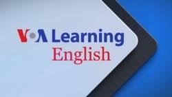 国际新闻 英语教学