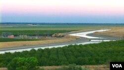 加州中部农业区的水道是生命线(美国之音国符拍摄)