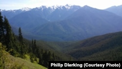 Olympic National Park's Hurricane Ridge